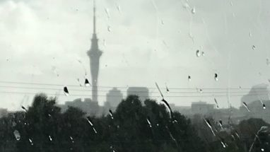 Rainy Day in Auckland