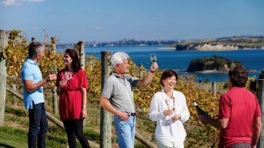 Cable Bay Winery, Waiheke Island, Auckland, New Zealand