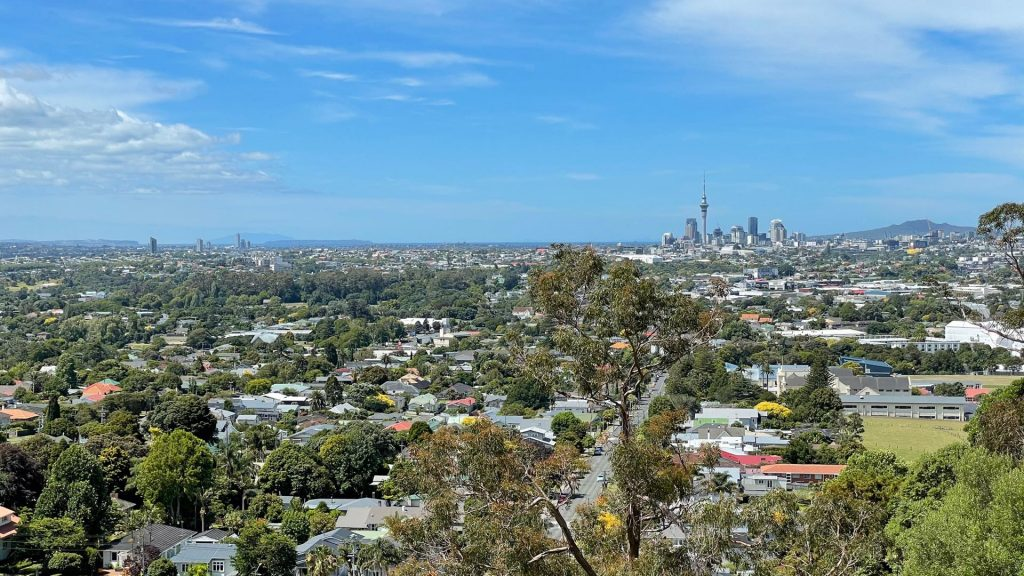 View from Mt Albert